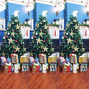 Christmas-at-Holmdel