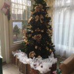 Christmas-at-Matawan